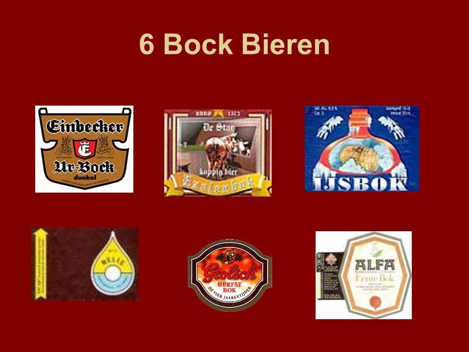 6 Bock Bieren