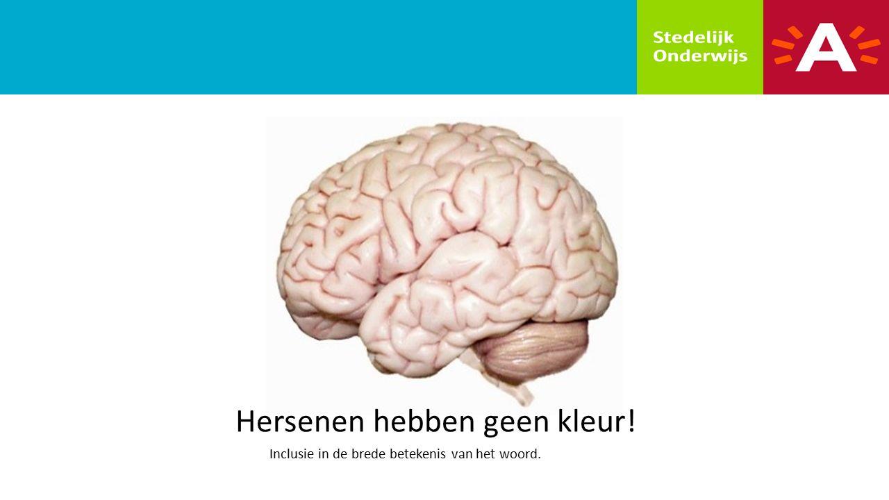 Hersenen hebben geen kleur! Inclusie in de brede betekenis van het woord.