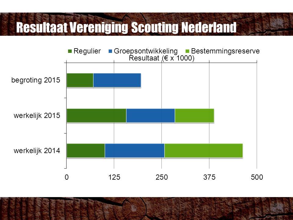 5 Resultaat Vereniging Scouting Nederland