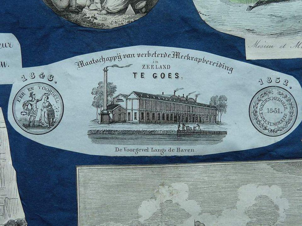Stoomzuivelfabriek Wijngaardstraat in 1924