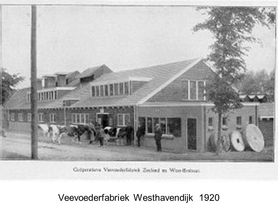 Veevoederfabriek Westhavendijk 1920