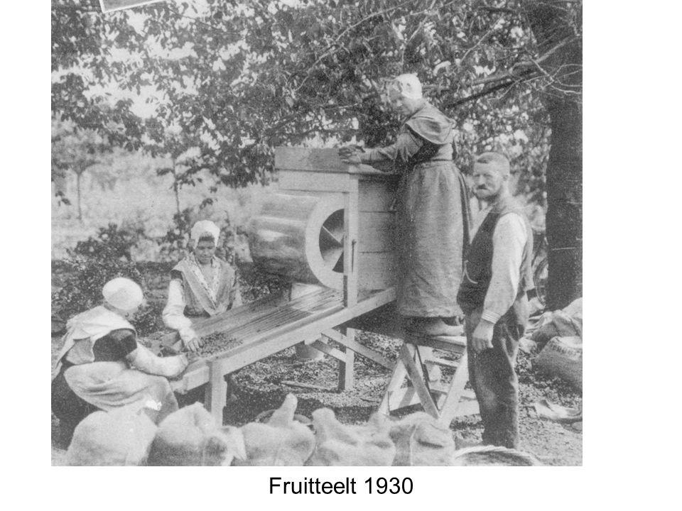 Fruitteelt 1930