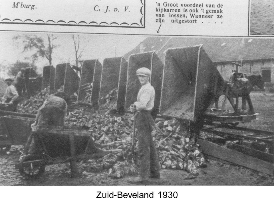 Zuid-Beveland 1930
