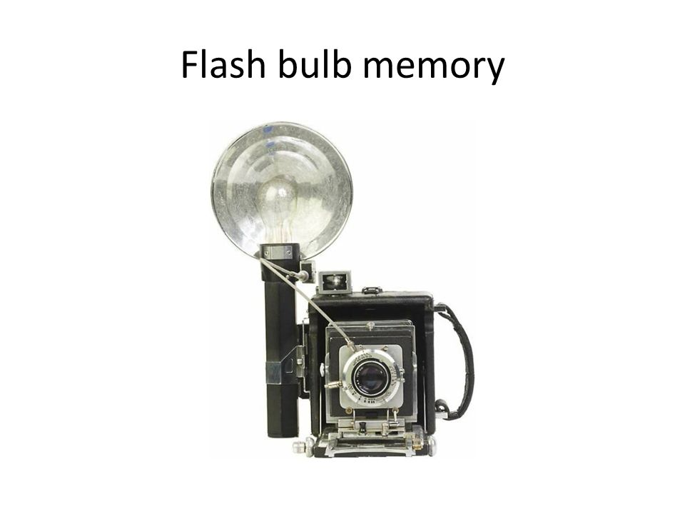 Flash bulb memory