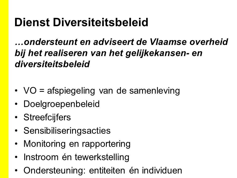 Dienst Diversiteitsbeleid …ondersteunt en adviseert de Vlaamse overheid bij het realiseren van het gelijkekansen- en diversiteitsbeleid VO = afspiegel