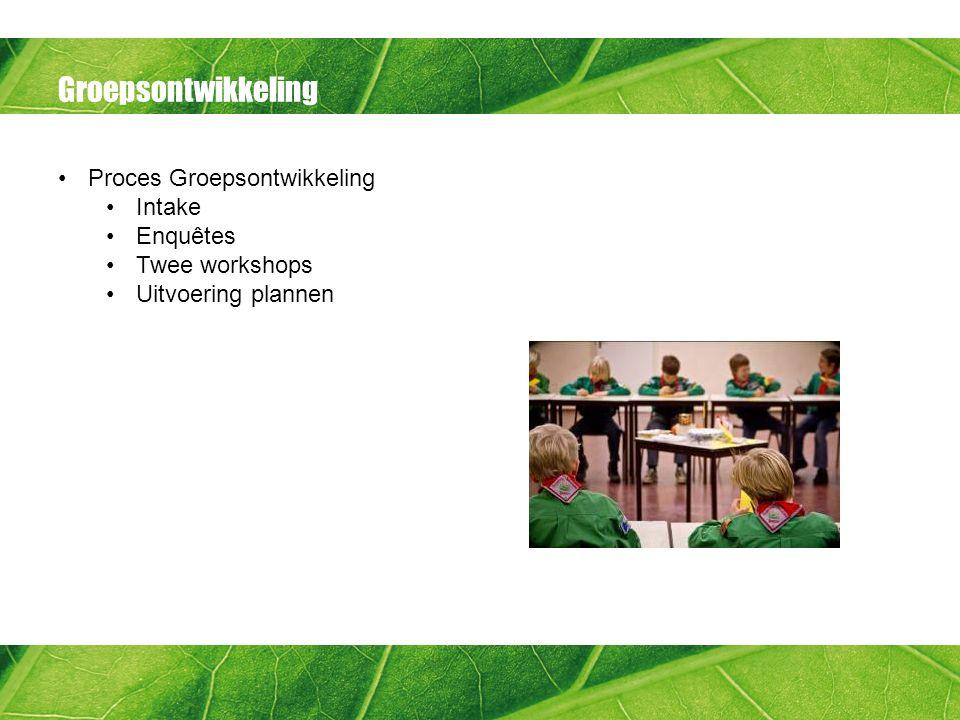 Groepsontwikkeling Proces Groepsontwikkeling Intake Enquêtes Twee workshops Uitvoering plannen