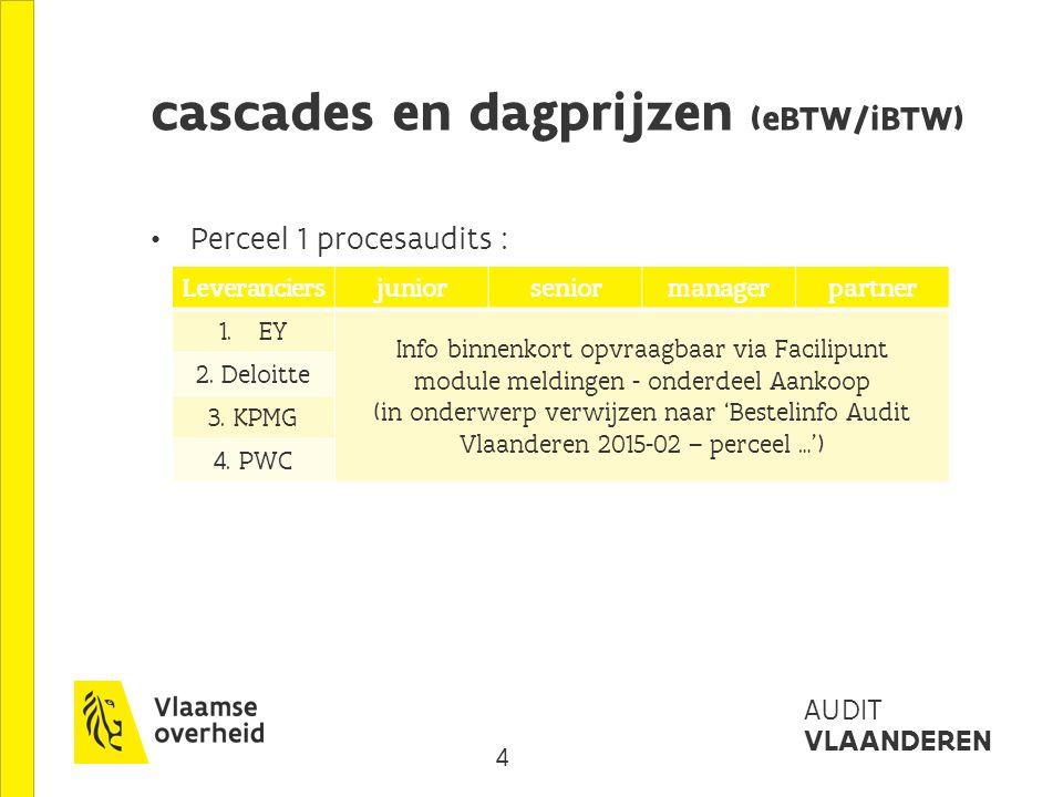 5 AUDIT VLAANDEREN cascades en dagprijzen (eBTW/iBTW) Perceel 2 organisatieaudits : LeveranciersJuniorseniormanagerpartner 1.