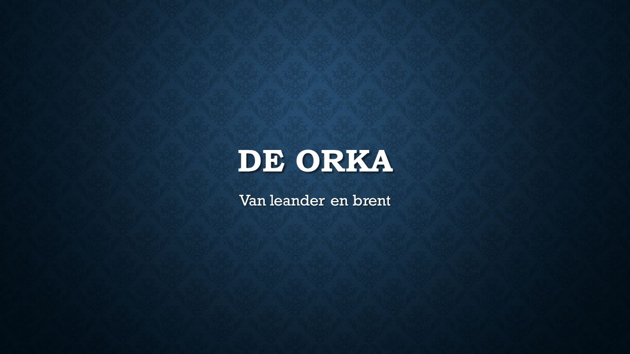 DE ORKA Van leander en brent