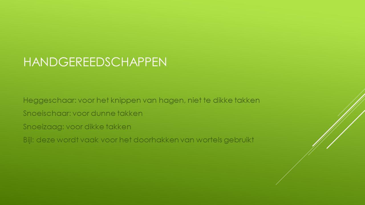 HANDGEREEDSCHAPPEN Heggeschaar: voor het knippen van hagen, niet te dikke takken Snoeischaar: voor dunne takken Snoeizaag: voor dikke takken Bijl: deze wordt vaak voor het doorhakken van wortels gebruikt