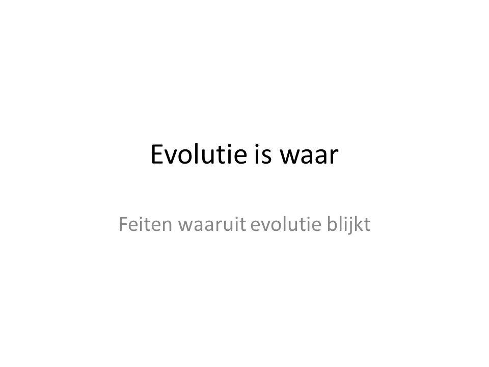 Evolutie is waar Feiten waaruit evolutie blijkt
