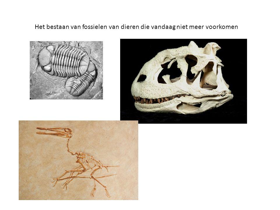 Het bestaan van fossielen van dieren die vandaag niet meer voorkomen