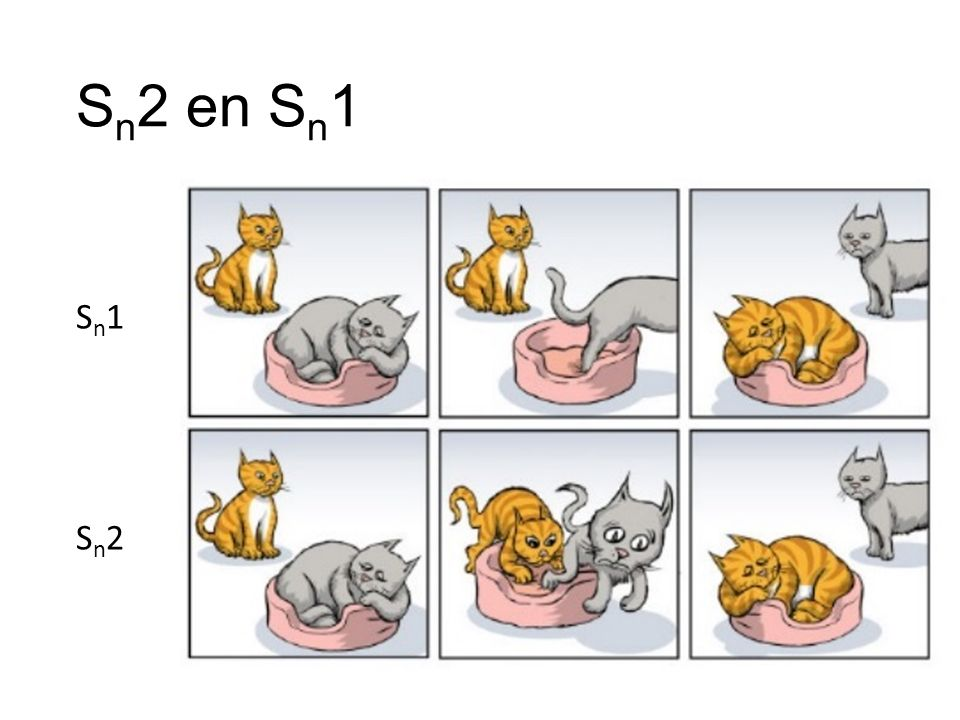 S n 2 en S n 1 Sn1Sn1 Sn2Sn2