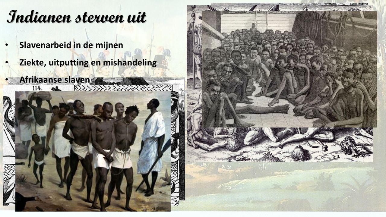 Indianen sterven uit Slavenarbeid in de mijnen Ziekte, uitputting en mishandeling Afrikaanse slaven