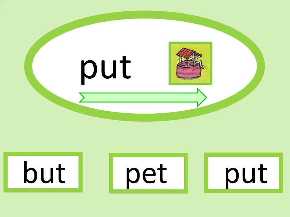 put butputpet