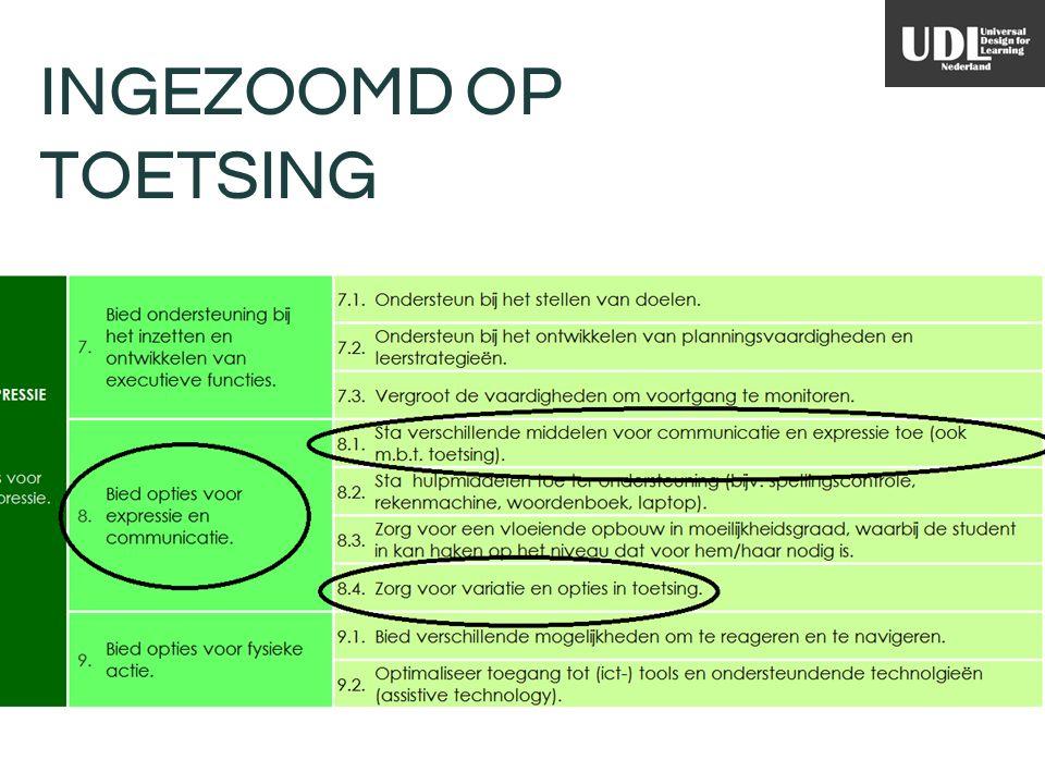 INGEZOOMD OP TOETSING Richtlijn 8 van Principe Actie & Expressie: Bied opties voor expressie en communicatie.