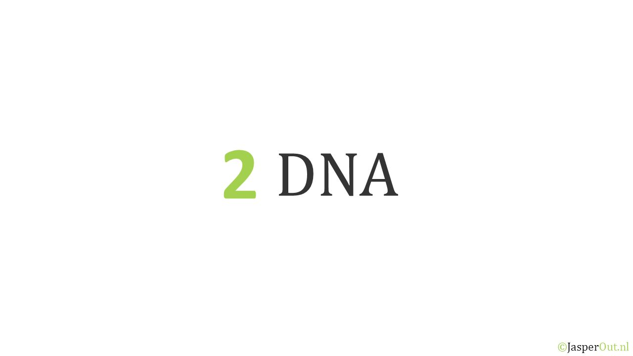 DNA 2 ©JasperOut.nl