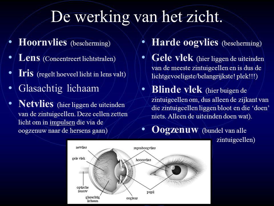 De werking van het zicht. Hoornvlies (bescherming) Lens (Concentreert lichtstralen) Iris (regelt hoeveel licht in lens valt) Glasachtig lichaam Netvli