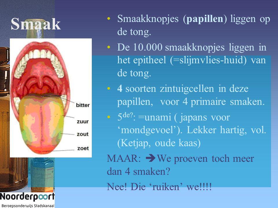 Smaak Smaakknopjes (papillen) liggen op de tong. De 10.000 smaakknopjes liggen in het epitheel (=slijmvlies-huid) van de tong. 4 soorten zintuigcellen
