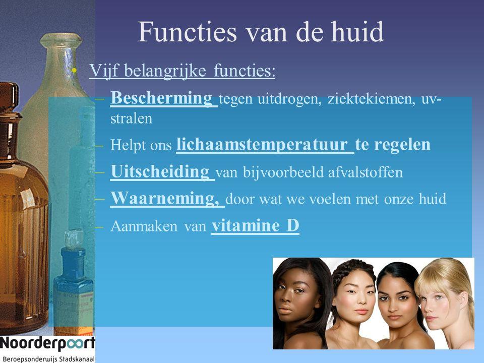 Functies van de huid Vijf belangrijke functies: –Bescherming tegen uitdrogen, ziektekiemen, uv- stralen –Helpt ons lichaamstemperatuur te regelen –Uit