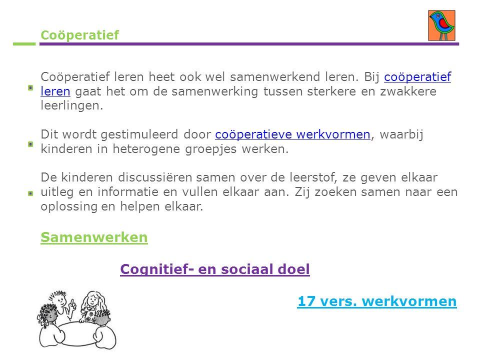 Coöperatief Coöperatief leren heet ook wel samenwerkend leren. Bij coöperatief leren gaat het om de samenwerking tussen sterkere en zwakkere leerlinge