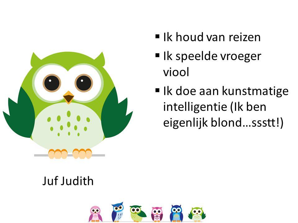 Juf Judith  Ik houd van reizen  Ik speelde vroeger viool  Ik doe aan kunstmatige intelligentie (Ik ben eigenlijk blond…ssstt!)