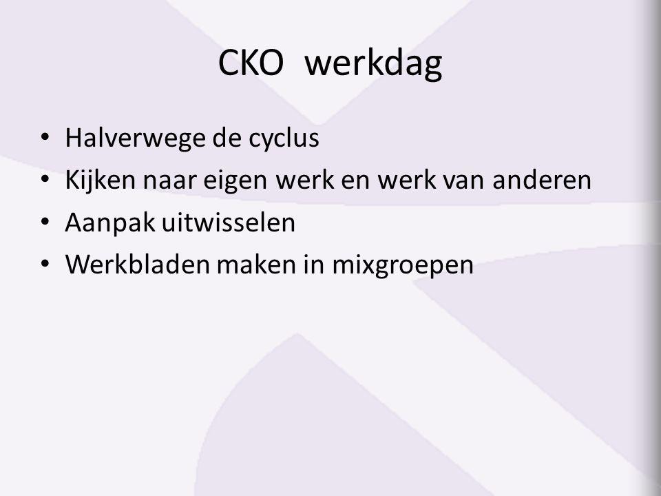 CKO werkdag Halverwege de cyclus Kijken naar eigen werk en werk van anderen Aanpak uitwisselen Werkbladen maken in mixgroepen