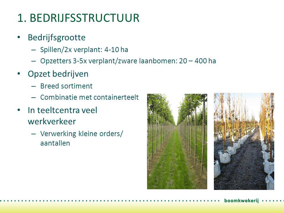 1. BEDRIJFSSTRUCTUUR Bedrijfsgrootte – Spillen/2x verplant: 4-10 ha – Opzetters 3-5x verplant/zware laanbomen: 20 – 400 ha Opzet bedrijven – Breed sor