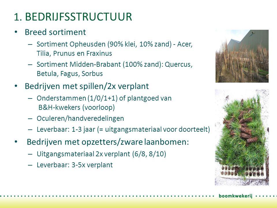 1. BEDRIJFSSTRUCTUUR Breed sortiment – Sortiment Opheusden (90% klei, 10% zand) - Acer, Tilia, Prunus en Fraxinus – Sortiment Midden-Brabant (100% zan