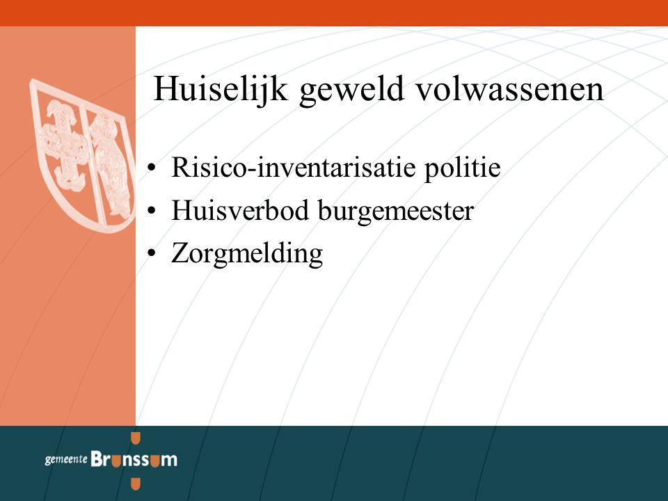 Huiselijk geweld volwassenen Risico-inventarisatie politie Huisverbod burgemeester Zorgmelding