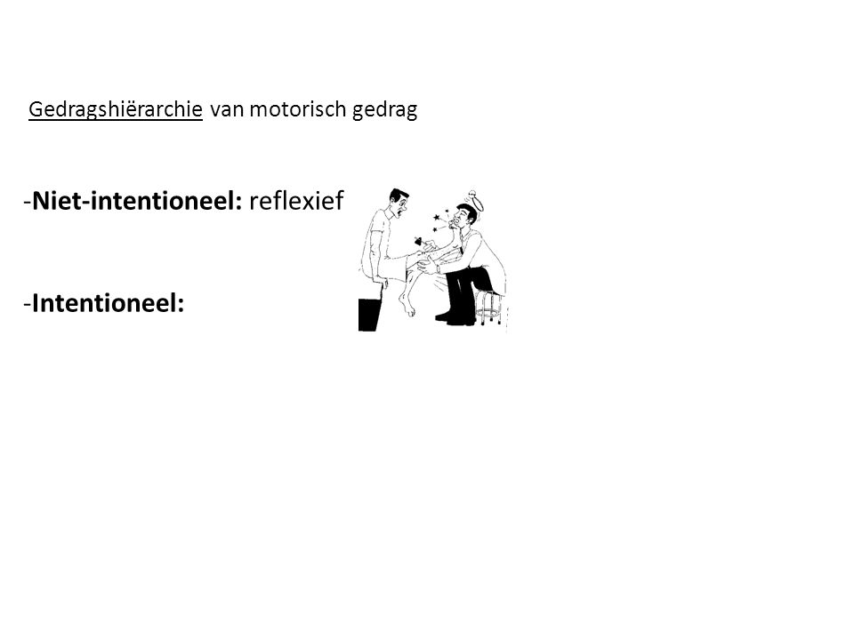 Gedragshiërarchie van motorisch gedrag -Niet-intentioneel: reflexief -Intentioneel: