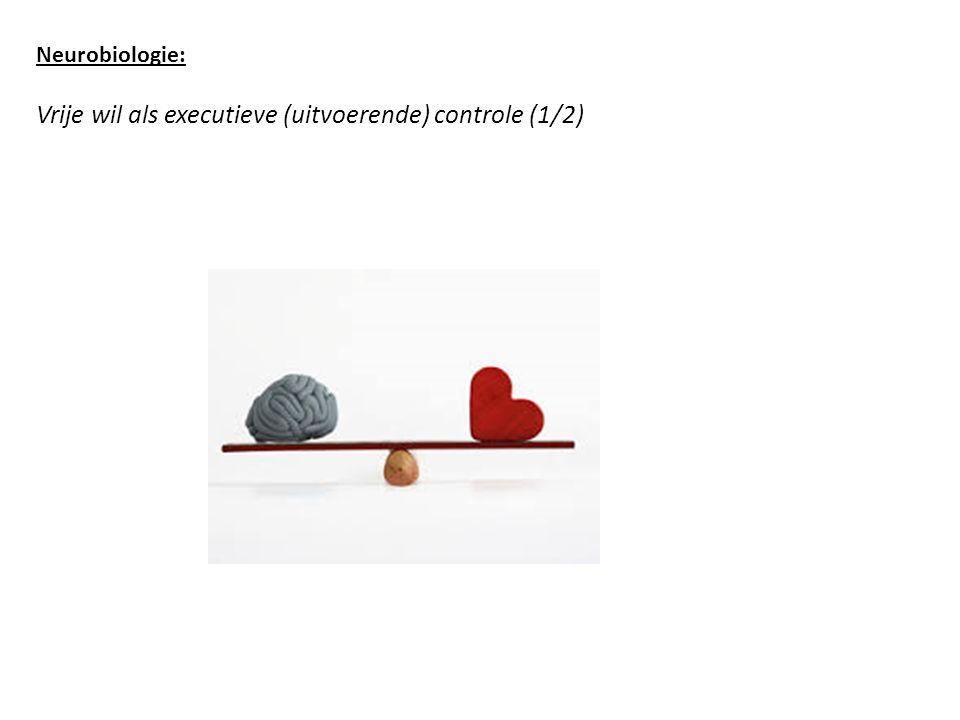 Neurobiologie: Vrije wil als executieve (uitvoerende) controle (1/2)