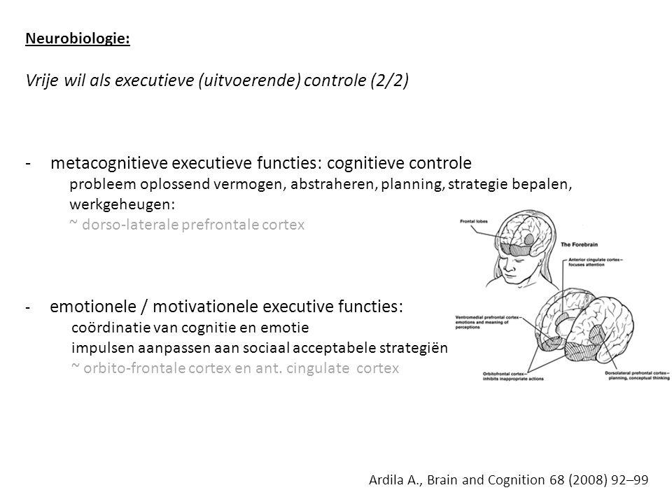 Neurobiologie: Vrije wil als executieve (uitvoerende) controle (2/2) -metacognitieve executieve functies: cognitieve controle probleem oplossend vermogen, abstraheren, planning, strategie bepalen, werkgeheugen: ~ dorso-laterale prefrontale cortex - emotionele / motivationele executive functies: coördinatie van cognitie en emotie impulsen aanpassen aan sociaal acceptabele strategiën ~ orbito-frontale cortex en ant.