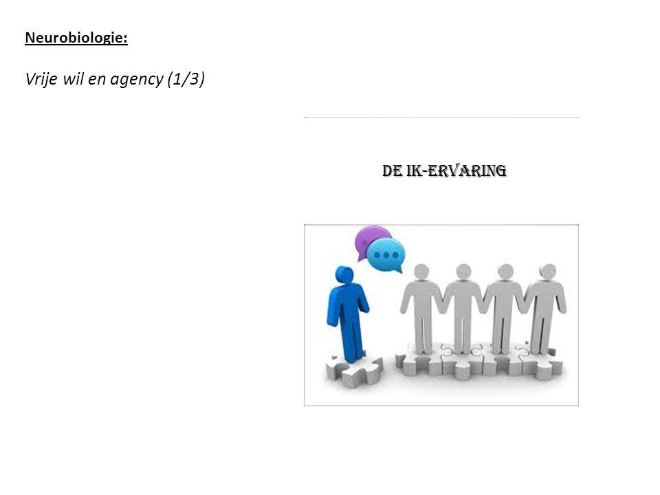 Neurobiologie: Vrije wil en agency (1/3) de ik-ervaring