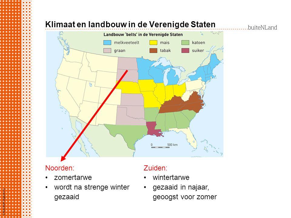 Klimaat en landbouw in de Verenigde Staten Noorden: zomertarwe wordt na strenge winter gezaaid Zuiden: wintertarwe gezaaid in najaar, geoogst voor zomer