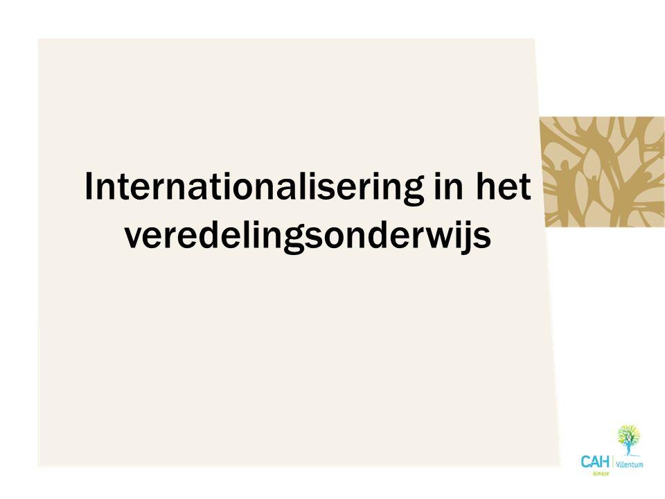 Internationalisering in het veredelingsonderwijs