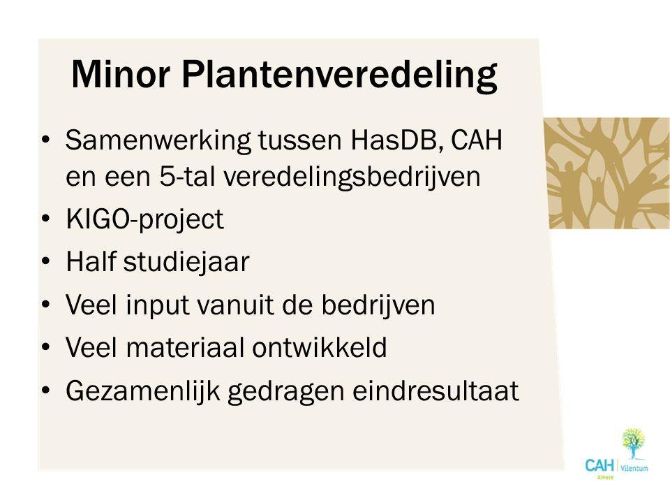 Minor Plantenveredeling Samenwerking tussen HasDB, CAH en een 5-tal veredelingsbedrijven KIGO-project Half studiejaar Veel input vanuit de bedrijven Veel materiaal ontwikkeld Gezamenlijk gedragen eindresultaat