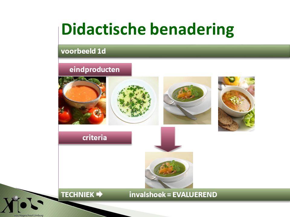criteria eindproducten TECHNIEK  invalshoek = EVALUEREND Didactische benadering voorbeeld 1d
