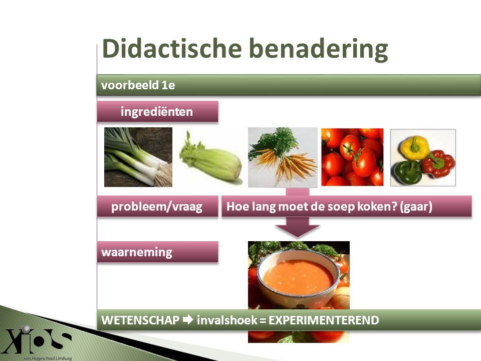 ingrediënten probleem/vraag waarneming WETENSCHAP  invalshoek = EXPERIMENTEREND Hoe lang moet de soep koken.