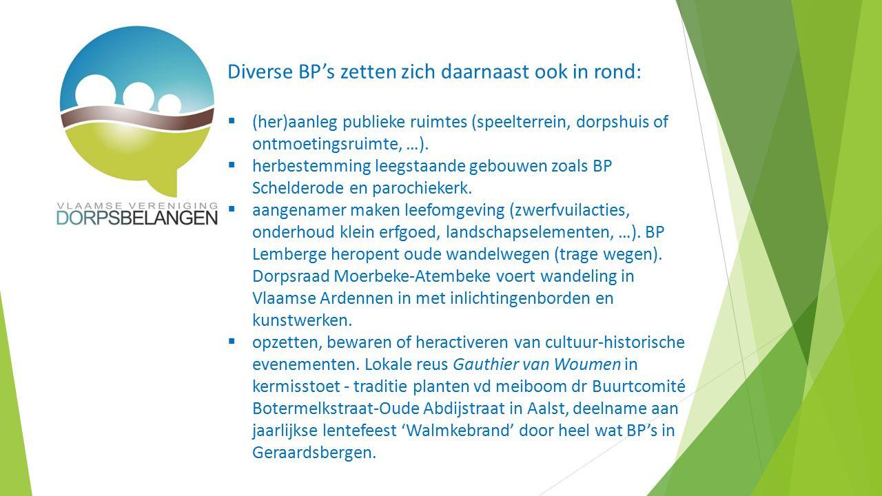 Diverse BP's zetten zich daarnaast ook in rond:  (her)aanleg publieke ruimtes (speelterrein, dorpshuis of ontmoetingsruimte, …).