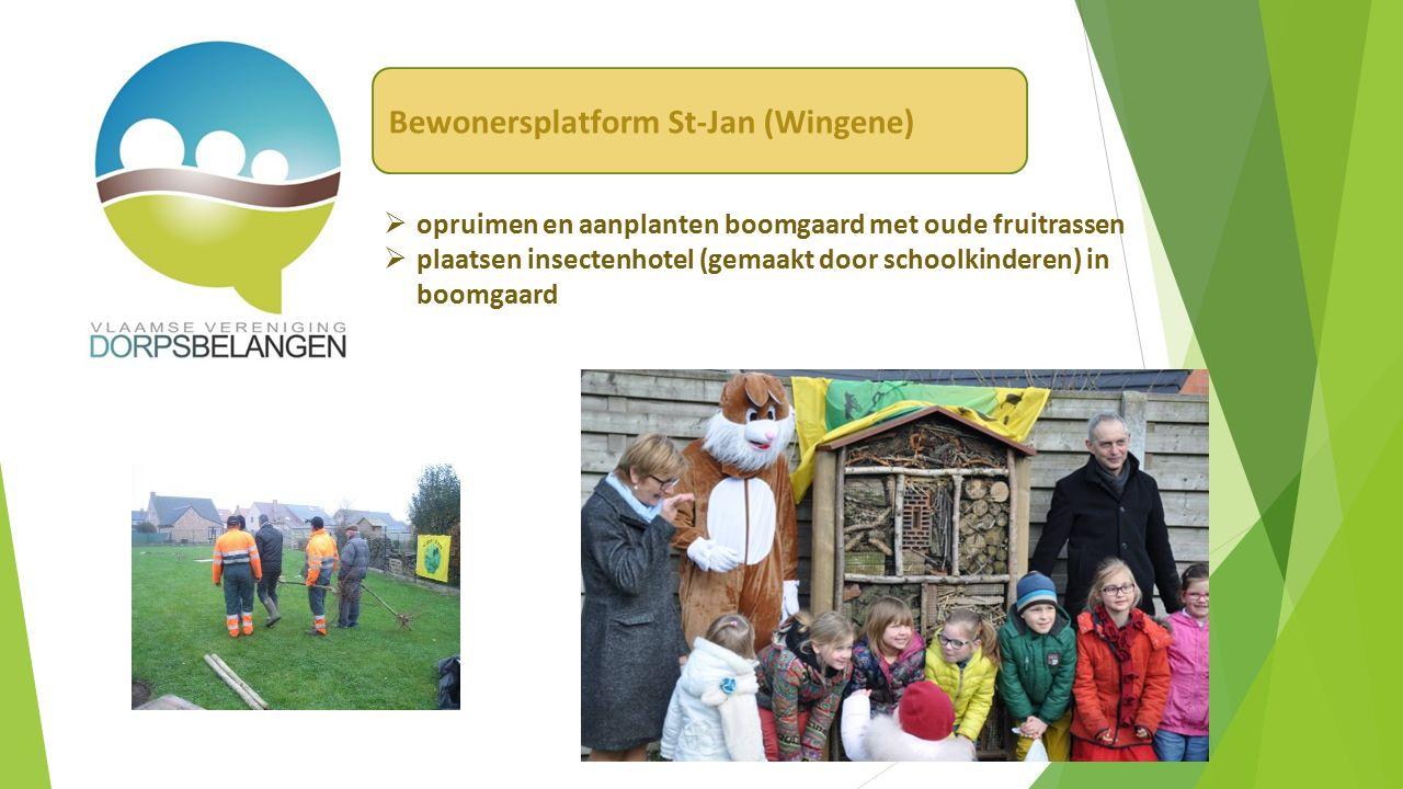  opruimen en aanplanten boomgaard met oude fruitrassen  plaatsen insectenhotel (gemaakt door schoolkinderen) in boomgaard Bewonersplatform St-Jan (Wingene)