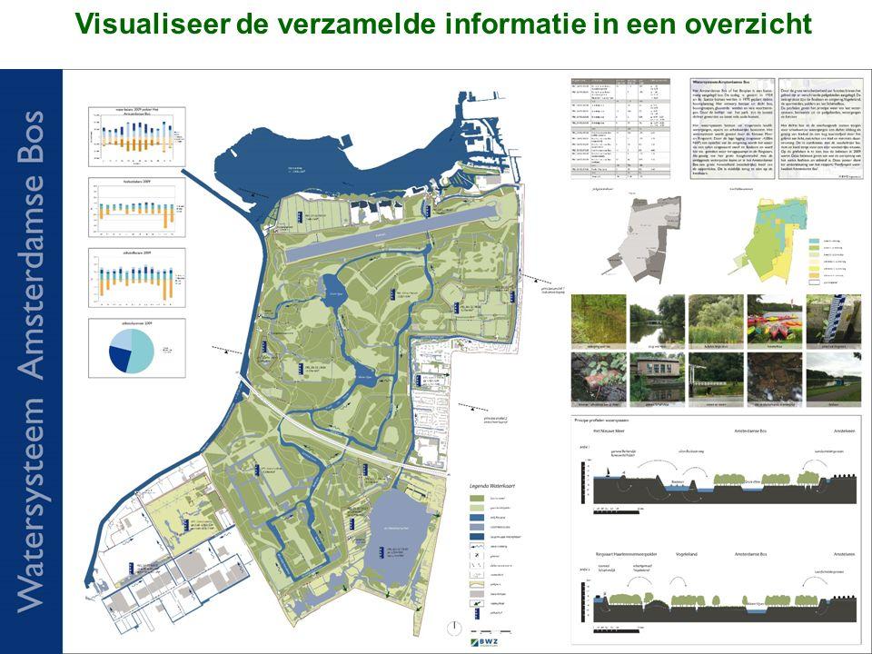 Visualiseer de verzamelde informatie in een overzicht