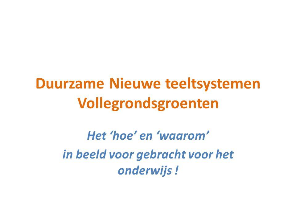 Duurzame Nieuwe teeltsystemen Vollegrondsgroenten Het 'hoe' en 'waarom' in beeld voor gebracht voor het onderwijs !