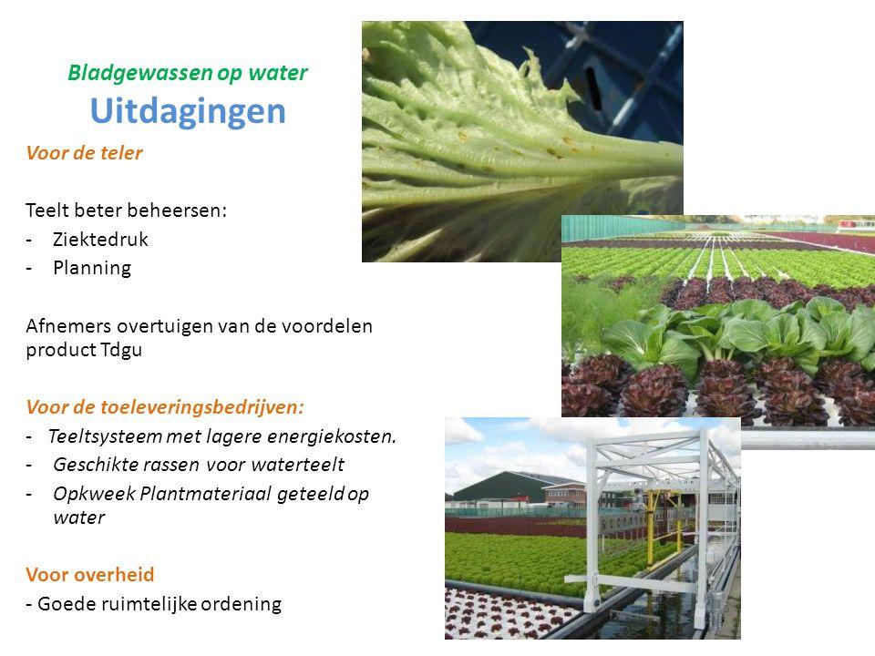 Bladgewassen op water Uitdagingen Voor de teler Teelt beter beheersen: -Ziektedruk -Planning Afnemers overtuigen van de voordelen product Tdgu Voor de toeleveringsbedrijven: - Teeltsysteem met lagere energiekosten.