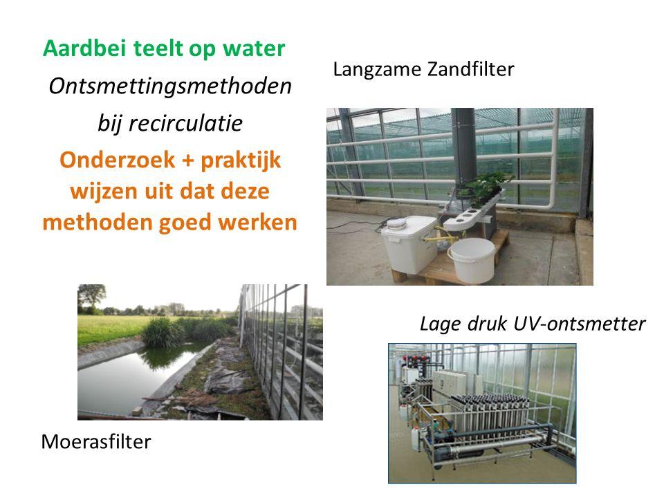 Aardbei teelt op water Langzame Zandfilter Ontsmettingsmethoden bij recirculatie Onderzoek + praktijk wijzen uit dat deze methoden goed werken Moerasfilter Lage druk UV-ontsmetter