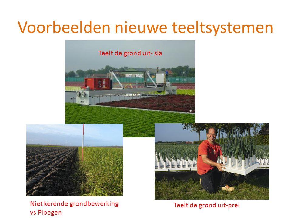 Voorbeelden nieuwe teeltsystemen Teelt de grond uit- sla Teelt de grond uit-prei Niet kerende grondbewerking vs Ploegen