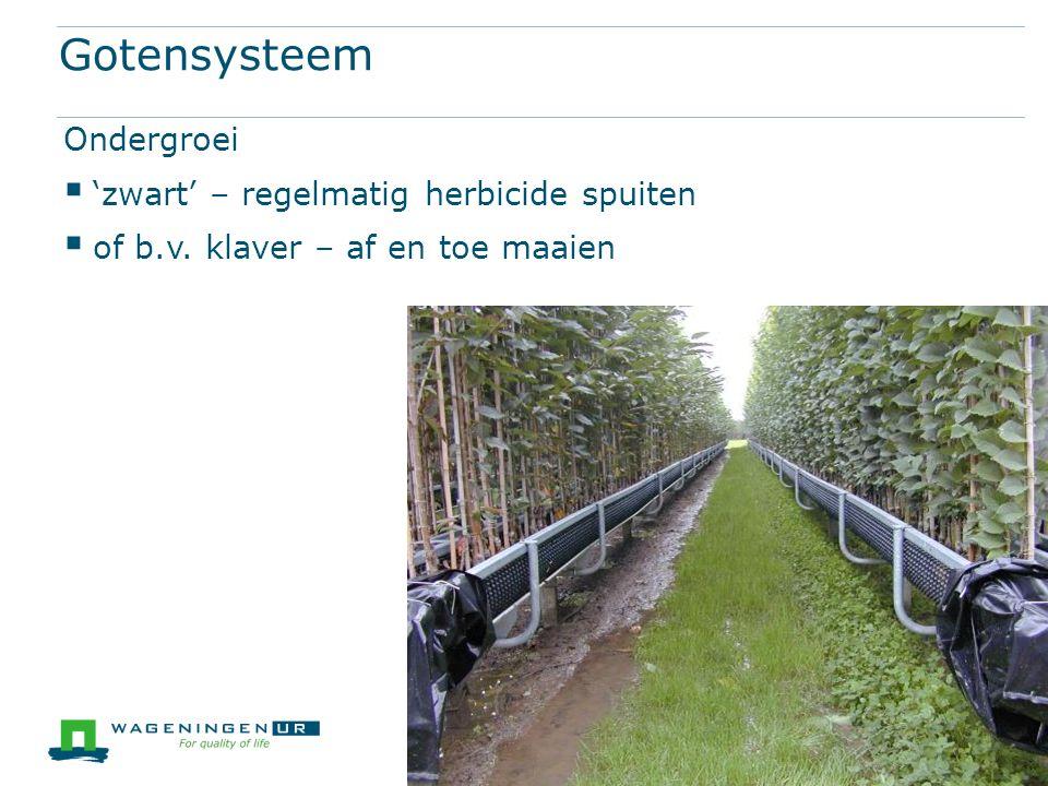 Gotensysteem Ondergroei  'zwart' – regelmatig herbicide spuiten  of b.v.