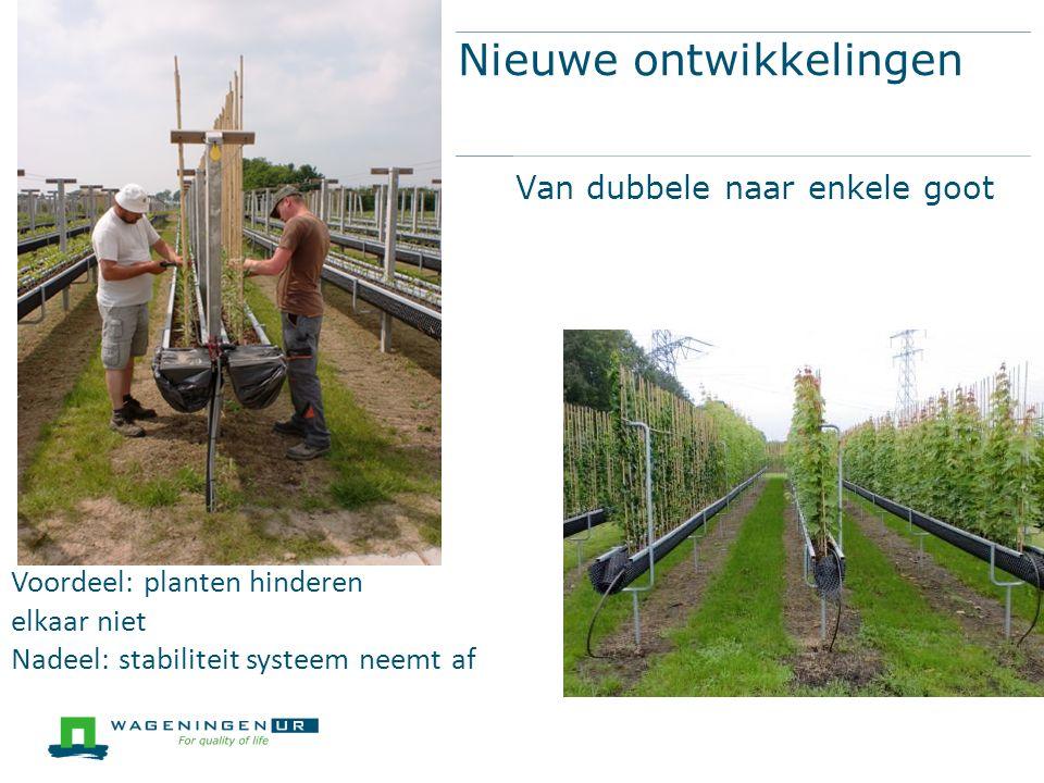 Nieuwe ontwikkelingen Van dubbele naar enkele goot Voordeel: planten hinderen elkaar niet Nadeel: stabiliteit systeem neemt af