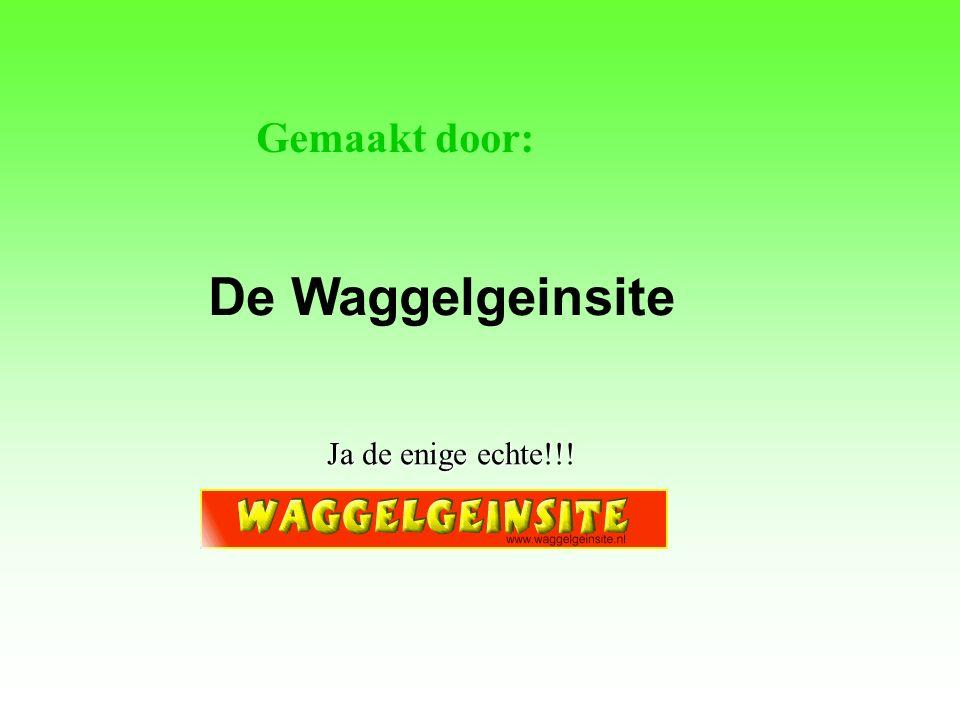 Gemaakt door: De Waggelgeinsite Ja de enige echte!!!