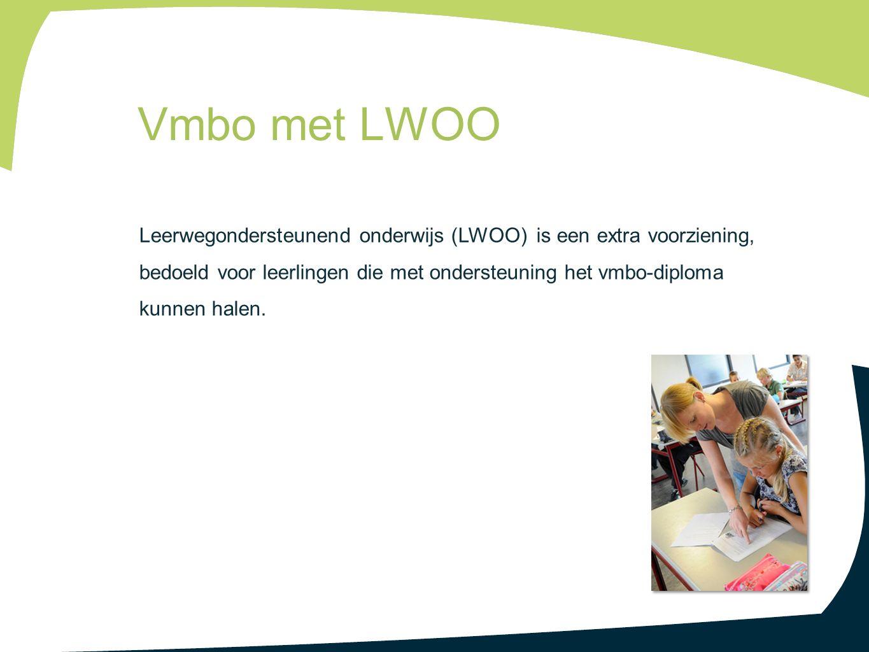 Leerwegondersteunend onderwijs (LWOO) is een extra voorziening, bedoeld voor leerlingen die met ondersteuning het vmbo-diploma kunnen halen. Vmbo met