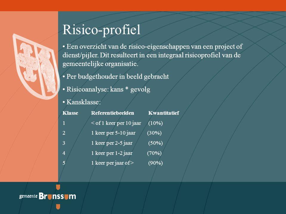 Risico-profiel Een overzicht van de risico-eigenschappen van een project of dienst/pijler.